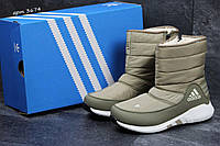 Зимние сапоги женские Adidas боливковые