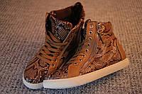 Женские ботинки хайтопы Street Style питон 36   37