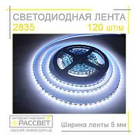 Светодиодная лента шириной 5 мм 2835 120 LED  IP20