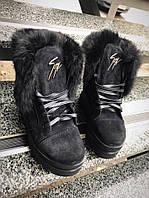Стильные женские зимние ботинки черные замш  Zann--ti с мехом кролика