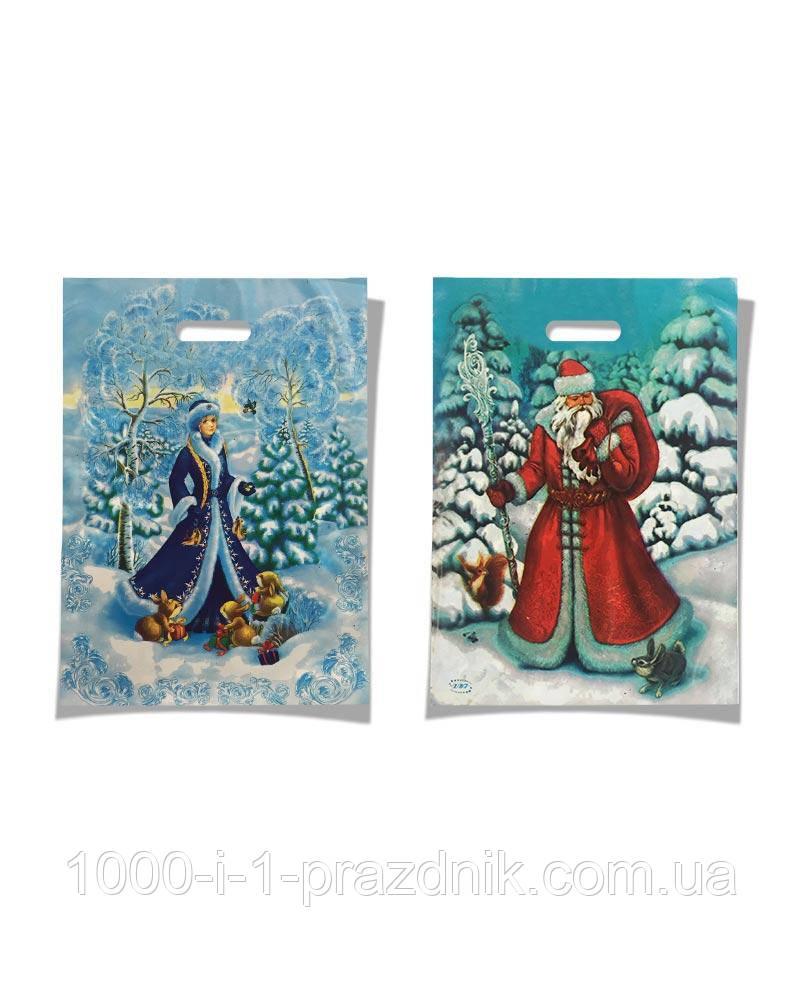 Пакет  23*35см Дед Мороз и Снегурочка