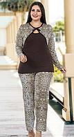 Домашняя одежда Lady Lingerie комплект 138 4XL
