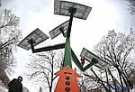Сонячне дерево у Київському зоопарку