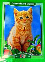 Пазлы Castorland 60 элементов Рыженький котенок