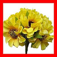 Цветок подсолнуха (календулы), цвет желтый