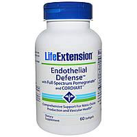 Укрепление сердечно-сосудистой системы, Endothelial Defense, Life Extension, 60 капсул