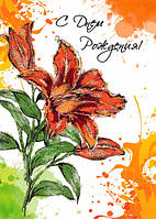 Упаковка поздравительных открыток А5 Люкс №ЛК-048 - 5шт