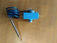 Термостат защитный капиллярный Thermex, 20А, 85-90°C