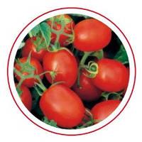 Семена томата Прогресс (Одил) 1000 сем.Семинис.