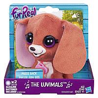 Поющие зверята Щенок Hasbro FurReal Friends 9 см