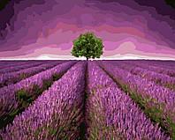 Картина по номерам без коробки Дерево на лавандовом поле (BK-GX3092) 40 х 50 см