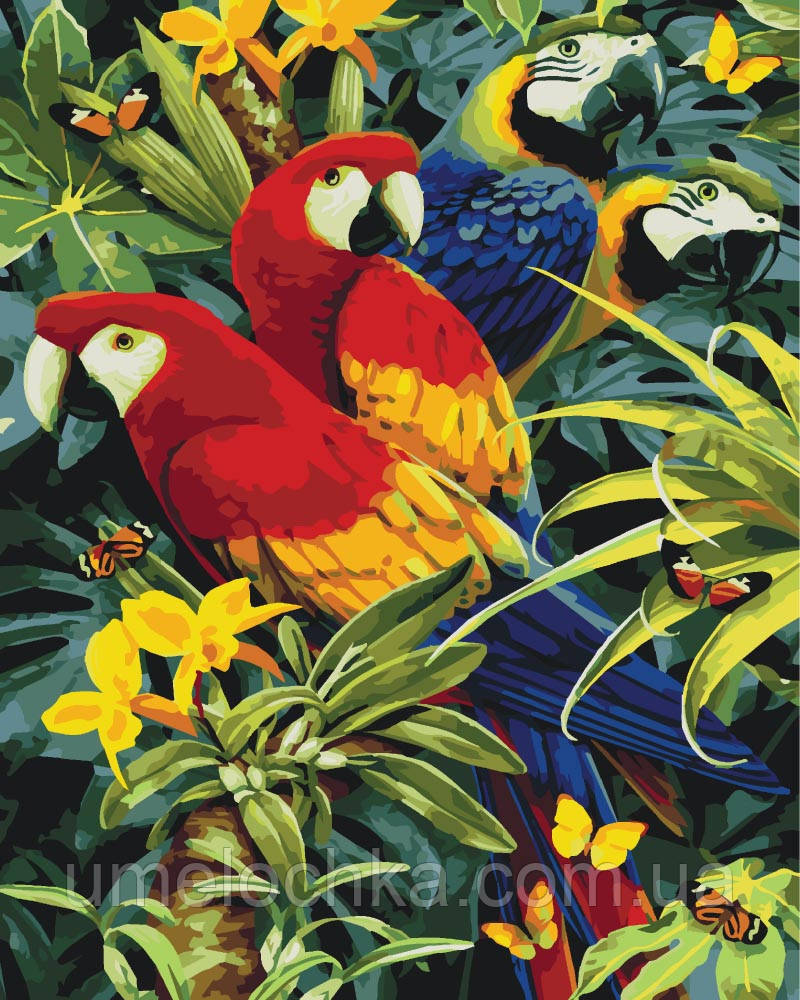 Картина по номерам без коробки Идейка Красочные ара Худ Ховард Робинсон (KHO4028) 40 х 50 см