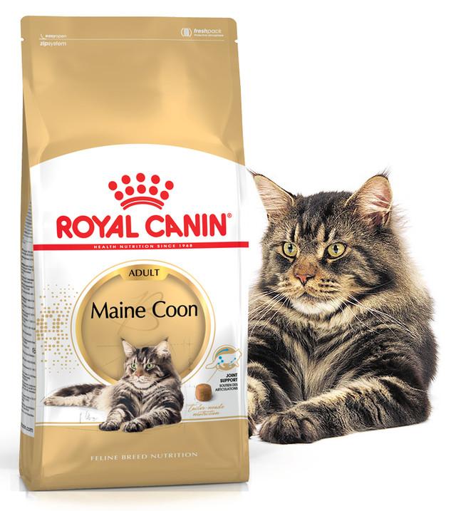 Корм для кошек породы Мэйн Кун Royal Canin Maine Coon