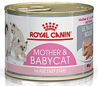 Консерва для котят Royal Canin Babycat Instinctive