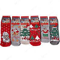 Новогодние теплые носки женские махровые НЖ0057