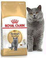 Royal Canin British Shorthair 34 для взрослых кошек породы Британская короткошерстная Основное питание, Для взрослых животных, Коты/кошки, Супер-премиум, Франция, 4 кг, Сухие корма
