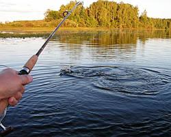 Використання прикормки при ловлі риби на річці