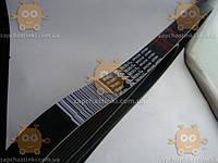 Ремень 8PK2166 привода генератора Газель NEXT, Бизнес дв.Cummins ISF 2.8 (пр-во Gates) поликлин