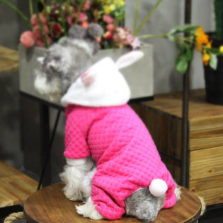 Комбинезон для животных Добаз, Dobaz Rabbit dot малина