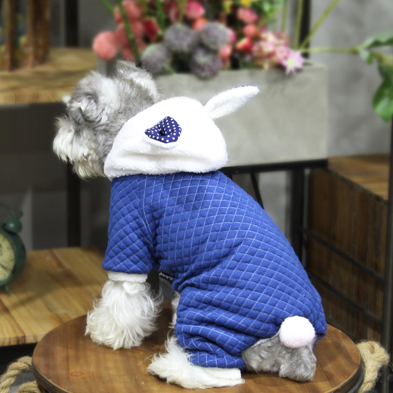 Комбинезон для животных Добаз, Dobaz Rabbit dot синий