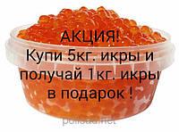 Икра красная лососевая горбуша зернистая весовая 5 кг
