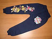 Спортивные штаны Щенячий патруль с начесом размер 5лет
