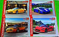Пазлы Castorland 120 элементов  Автомобили