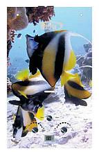 Колонка газовая MATRIX JSD 20-8 (Рыбки) стекло