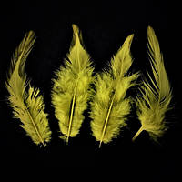 Перья петуха (Перо) Медовые 5-12 см 150 шт/уп 10 грамм