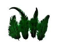 Перья петуха (Перо) Изумрудные Зеленые 5-12 см 150 шт/уп 10 грамм