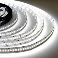 Светодиодная лента BIOM Standart SMD 3528 12v, 60 LEDs/m, 4,8W IP20 белый