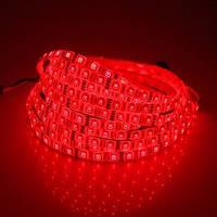 Светодиодная лента BIOM Standart SMD 3528 12v, 60 LEDs/m, 4,8W IP20 красный