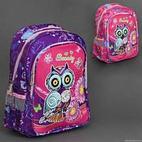 Рюкзак школьный 555-444 (60) 2 цвета, 2 отделения, 2 кармана, новая ортопедическая спинка