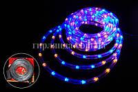 Световой шнур дюралайт LED длина 20 м   желто синее свечение