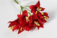 Декоративные цветы лилии красного цвета, фото 1