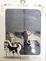 Набор махровых полотенец Little teddy 02