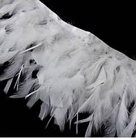 Перья индюка Белые на ленте 12-15 см/50 см, фото 1