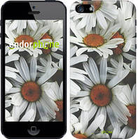 """Чехол на iPhone 5 Ромашки v2 """"2699c-18-532"""""""