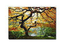 Светящиеся картины Startonight Дерево Клен Природа Пейзаж Печать на Холсте Декор стен Дизайн дома Интерьер, фото 1