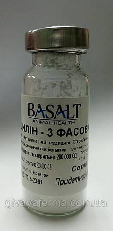 Ветбицилин 3, антибиотик, раствор, фото 2
