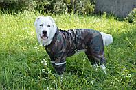 Дождевик  для собаки камуфляж, фото 1