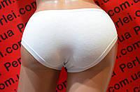 Женские трусы из хлопка, нижнее белье
