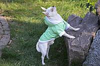 Курточка для собаки утепленная  Сильвер