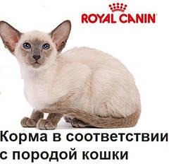 По породе кошки