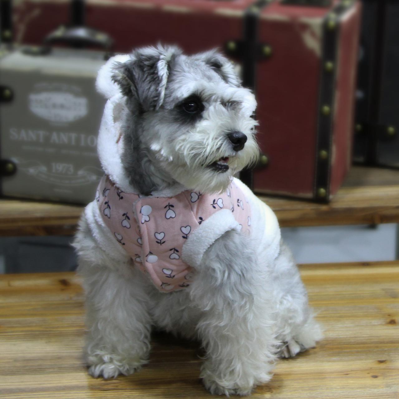 Куртка для животных Добаз, Dobaz Sweet Bunny роза
