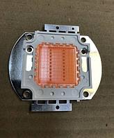 Фито светодиод матричный СОВ SL-20F 20W full spectrum led  PREMIUM (45Х45 mil) Код.59119