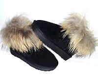 Угги/унты/сапоги Ugg мини женские замша с натуральным мехом енота черные 0078КФМ