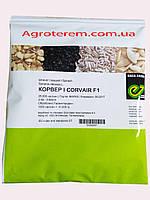 Семена шпината Корвер Corvair F1 25000с.(Enza Zaden), фото 1