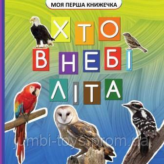 Моя перша книжечка : Хто у небі літає