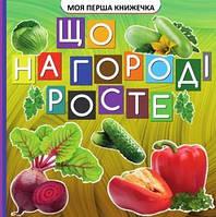 Моя перша книжечка : Що росте на городі